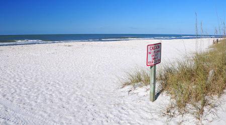 Caladesi-Island-beach-Clearwater