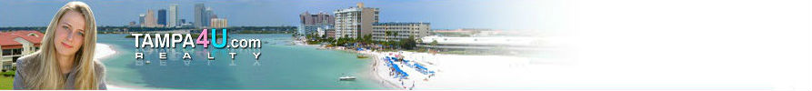 Tampa4U.com real estate header