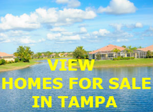 Residents cite 11 best places to live in tampa bay area for Best places to live in tampa