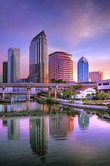 Why Tampa Why Move To Tampa Bay Reasons To Move To Tampa